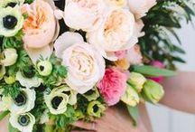 Fresh Blooms / by Zoe Organics