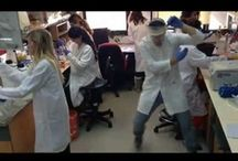 Life in the Science Lab