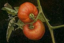 """tomatoes / """"It's difficult to think anything but pleasant thoughts while eating a homegrown tomato."""" ~ Lewis Grizzard / by TesAyes"""