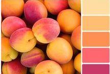 Color Chips / by Caroline Rabideau