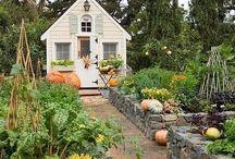 Kitchen Garden / #garden #herbs #vegetables