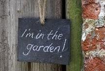 Gardening <3 / by Tiara Kirkland