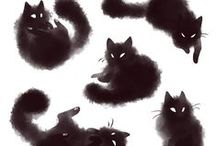 Cat Obsession