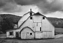 My Weird Barn Obsession / by Callie Campbell