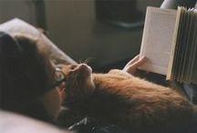 """Nairy / Со странички подруги. Nairy - поклонница стиля фэнтези, духовных поисков, воображения, дизайна, мы вместе посещали курсы в универ, она подарила мне кота Макса, её любимыми персонажами всегда были сэр Джуффин Халли из юморных книг М. Фрая и """"Ведьмак"""" трэшевых книг А. Сапковского, а также Мелькор фанфика на Дж. Толкиена """"Чёрной книги Арды"""" Ниенны."""