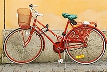 Bike, bicycle, tricycle, trailers & baskets / by Dryad
