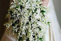Wedding Ideas / by Stems Florist