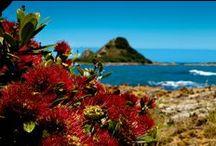 Aotearoa  / Land of the long white cloud aka Home