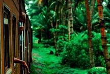 next stop: Sri Lanka