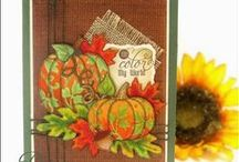 Fall/Halloween/Thanksgiving Cards by Darsie Bruno