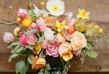 Flowers / by Brittany Dresser