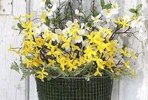Spring Decorating / Add pretty spring flair to your home with our ideas for centerpieces, table settings, door displays and more. See more ideas here: http://www.midwestliving.com/homes/entertaining/spring-centerpieces/ / by Midwest Living