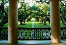 the old south / A plantation by any other name is just a farm. But it does roll of the tongue a little sweeter doesn't it? ~ Sweet Home Alabama / by Danielle Dozier