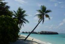 DUBAI Y MALDIVAS - Viaje Temático / Este circuito pertenece a uno de nuestros circuitos temáticos con fechas de salida el 5 Diciembre 2015 y el 19 Marzo 2016. Dos mundos unidos en un sólo circuito: Safari en el desierto en 4X4,Crucero Dhow en Dubai, descubre el Palm Jumeirah, vuela en hidroavión en Maldivas contemplando sus atolones y mucho más. Prepárate para todo  lo que vas a descubrir en estos 9 días.