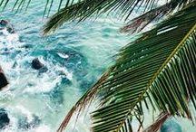 Beach Scenes / Beach + Ocean Vibes