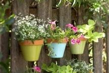 For the garden.
