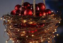 Holiday and Christmas Fun  / Winter Holiday and Christmas Fun