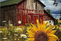 Old Barns & Rust / Seasoned to perfection.