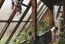 Exteriors: Garden / Ideas for domestic green spaces!