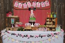 Farm Barn Bash Girl Birthday Party