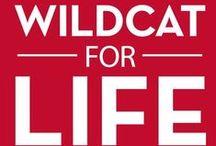 University of Arizona Wildcats / My alma mater in Tucson, Arizona-Go Wildcats!!
