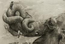 illustration / by Maria Fidalgo