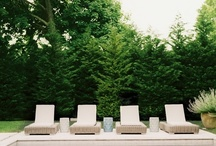 Landscaping & Backyard Ideas / by Kelly Robson