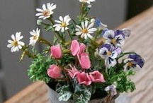 Miniature flowers and plants