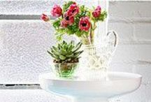 Flower Styling / by Heart Home magazine