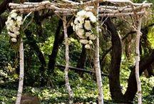 weddings ♔ / by spirit world