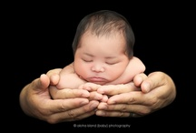 Newborn/Infant Photography / by Trenna Fowler Photography