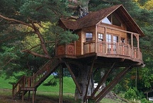 Time to start building Treehouses...in Brazil!