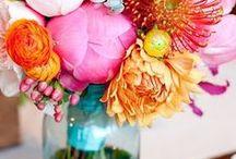 Weddings:  Spring/Summer