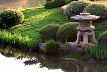 Exteriors: Landscaping & Furniture