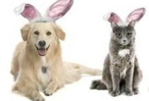Easter / Everything Easter! / by Heather Hill