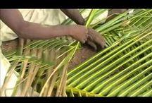 Ghana in green / #Ghana in #green le #Ghana en #vert