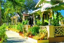 Naples FL | Shopping / Love to shop in Naples!