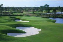 Naples FL | Golf / Naples FL golf