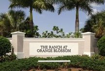 Orange Blossom Ranch | Naples FL / Located in one of southwest Florida's fastest-growing areas, Naples is the perfect choice for active families who are looking for a prestigious environment, outstanding schools, and access to world-class culture and entertainment. A Lennar community.  #dorenenaples #naplesnewhomes