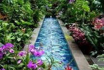 Garden Ideas / Thinking about a new garden - here's some ideas to get you going.