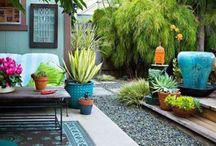 Garden / Tips + ideas for creating + maintaining a beautiful garden
