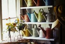 Watering Cans / by Connie Flemming