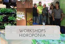 Workshop Hidroponia Portugal / Todos os workshops de hidroponia a acontecerem em Portugal.  Vem conhecer esta técnica de cultivo.