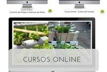 Cursos online Hidroponia