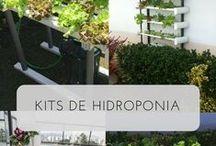 Kits hidroponia