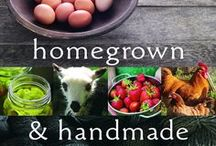 Self Sufficient - Homesteading