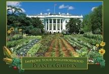 Gardens/Garden Ideas / by Laura Ross