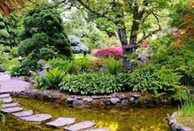 Espacios: Exteriores / Paisajismo - Patios - Terrazas - Jardines - Fuentes - Estanques - Objetos Decorativos - Tips & Tricks