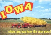 Iowa / Born and raised Iowa farm girl....love everything about it and will stay here my entire life. / by Hawk Valley Garden Spencer, Iowa