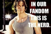 Fangirl / Potter. Supernatural. Marvel. Star Trek. Anything Whedon. And a whole lotta other things too.